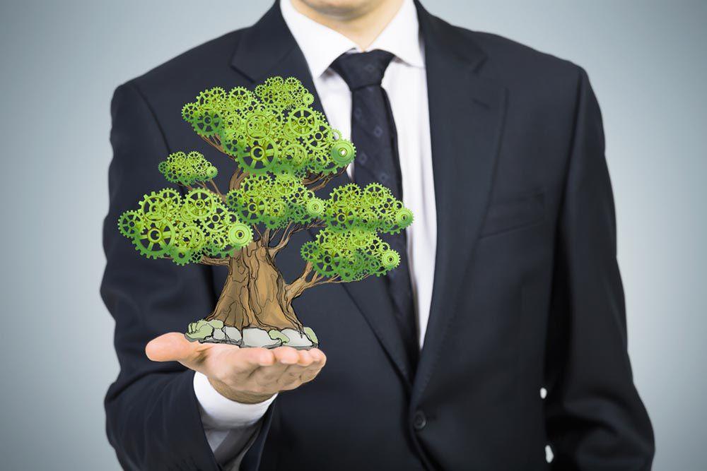 Оцінка впливів на довкілля (ОВД)