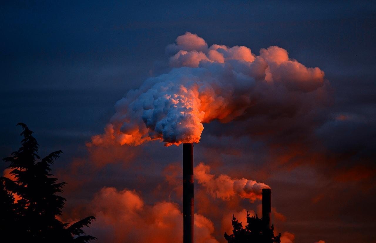 Оценка возможного ущерба от загрязнений, юридический и экологический сопровождение проведения работ по устранению загрязнений