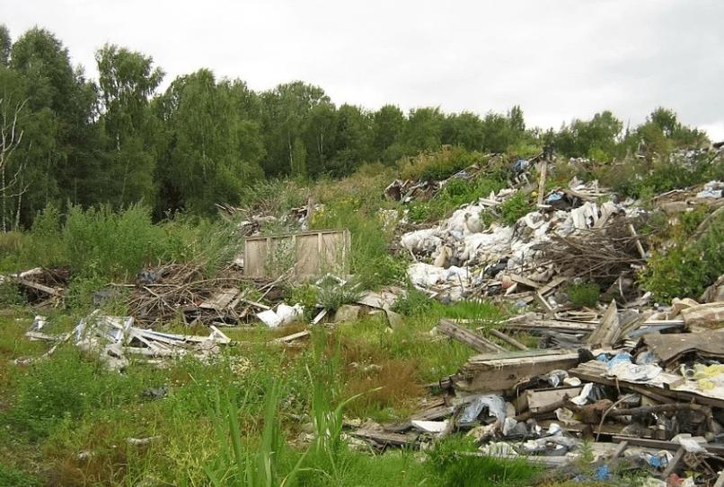 Оценка возможного ущерба от загрязнений, юридический и экологический сопровождение проведения работ по устранению загрязнений                                                                             - Фото №3