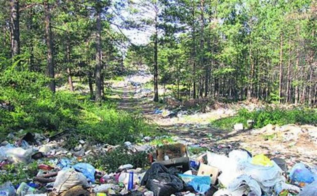 Разработка материалов оценки воздействия на окружающую среду (ОВОС)                                                                             - Фото №3