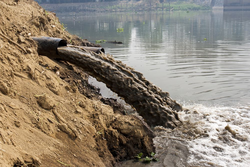 Оцінка можливого збитку від забруднень, юридичний та екологічний супровід проведення робіт по усуненню забруднень                                                                             - Фото №11